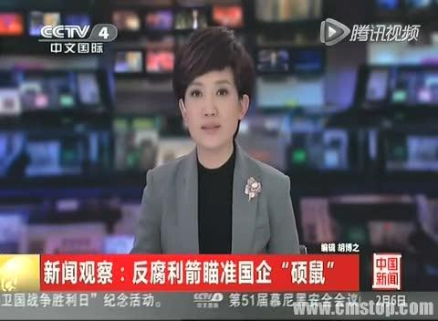 """新闻观察:反腐利箭瞄准国企""""硕鼠""""截图"""